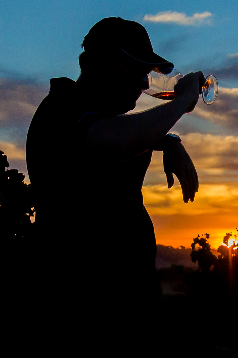 drinking wine alentejo
